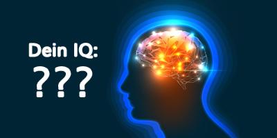 Der IQ Schnelltest