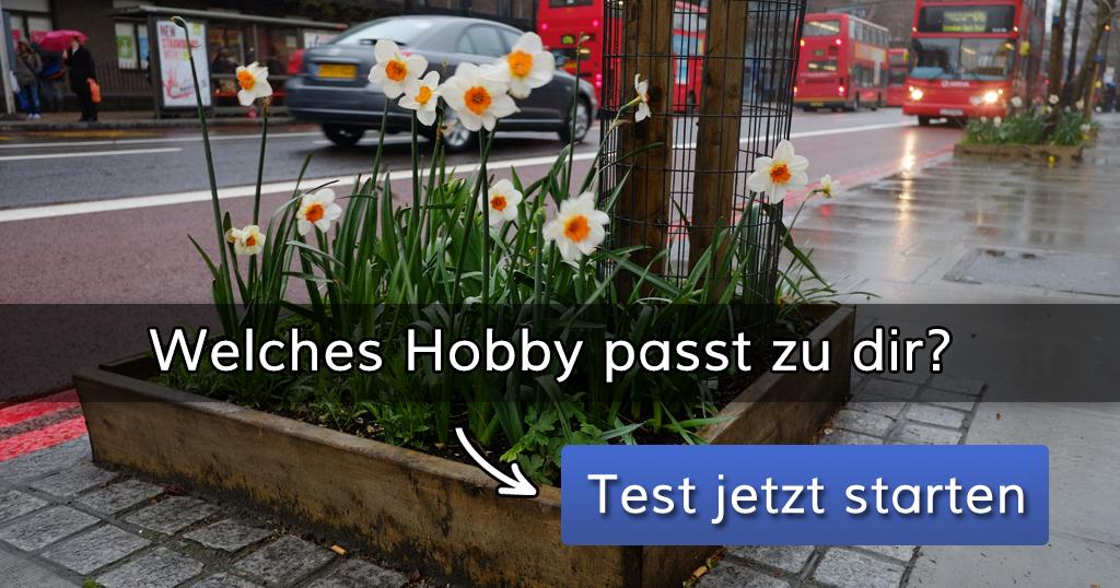 www.mein-wahres-ich.de