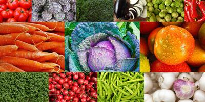 Kennst du dich im Gemüsebeet aus?