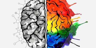 Denkst du eher mit der rechten oder linken Gehirnhälfte?