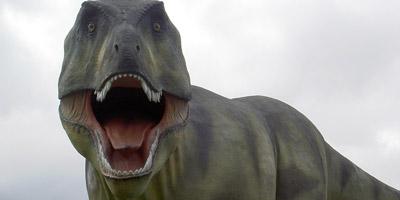 Das große Dinosaurier Quiz