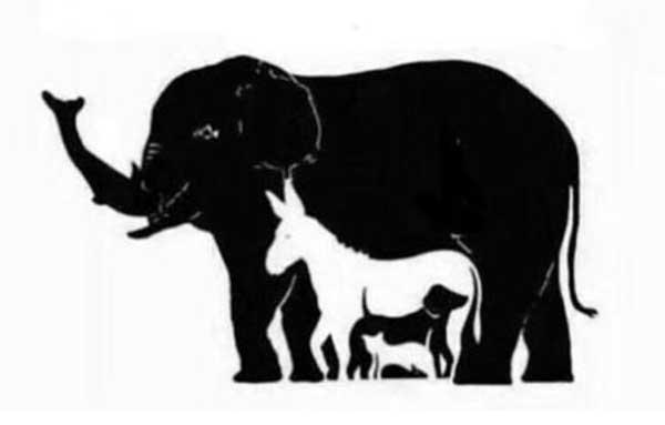 Wie viele Tiere siehst du?