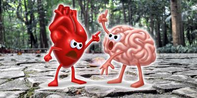 Sind dein Herz und dein Gehirn gute Freunde?
