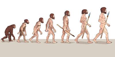 Auf welcher Evolutionsstufe befindet sich dein Partner?