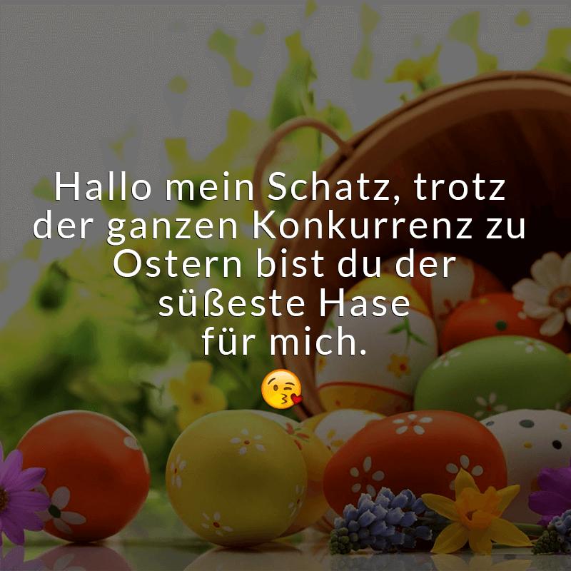 Hallo mein Schatz, trotz der ganzen Konkurrenz zu Ostern bist du der süßeste Hase für mich.
