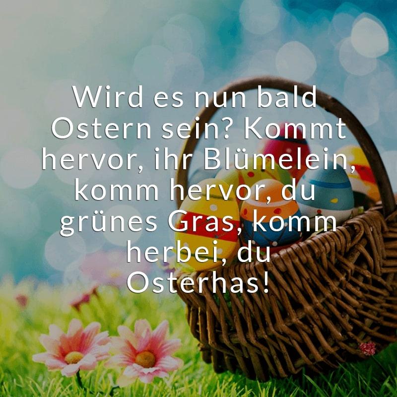 Wird es nun bald Ostern sein? Kommt hervor, ihr Blümelein, komm hervor, du grünes Gras, komm herbei, du Osterhas!