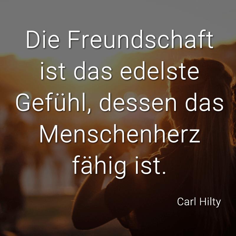 Die Freundschaft ist das edelste Gefühl, dessen das Menschenherz fähig ist. (Carl Hilty)