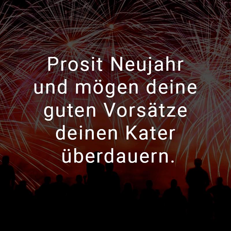 Prosit Neujahr und mögen deine guten Vorsätze deinen Kater überdauern.