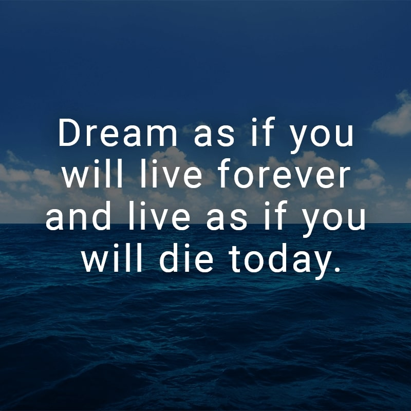Dream as if you will live forever and live as if you will die today.