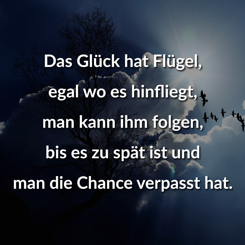 Das Glück hat Flügel, egal wo es hinfliegt, man kann ihm folgen, bis es zu spät ist und man die Chance verpasst hat.