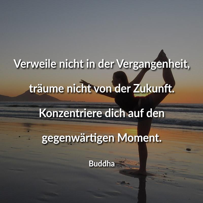 Verweile nicht in der Vergangenheit, träume nicht von der Zukunft. Konzentriere dich auf den gegenwärtigen Moment. (Buddha)