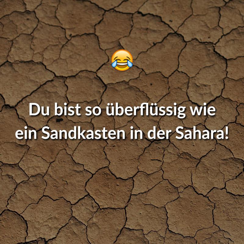 Du bist so überflüssig wie ein Sandkasten in der Sahara!