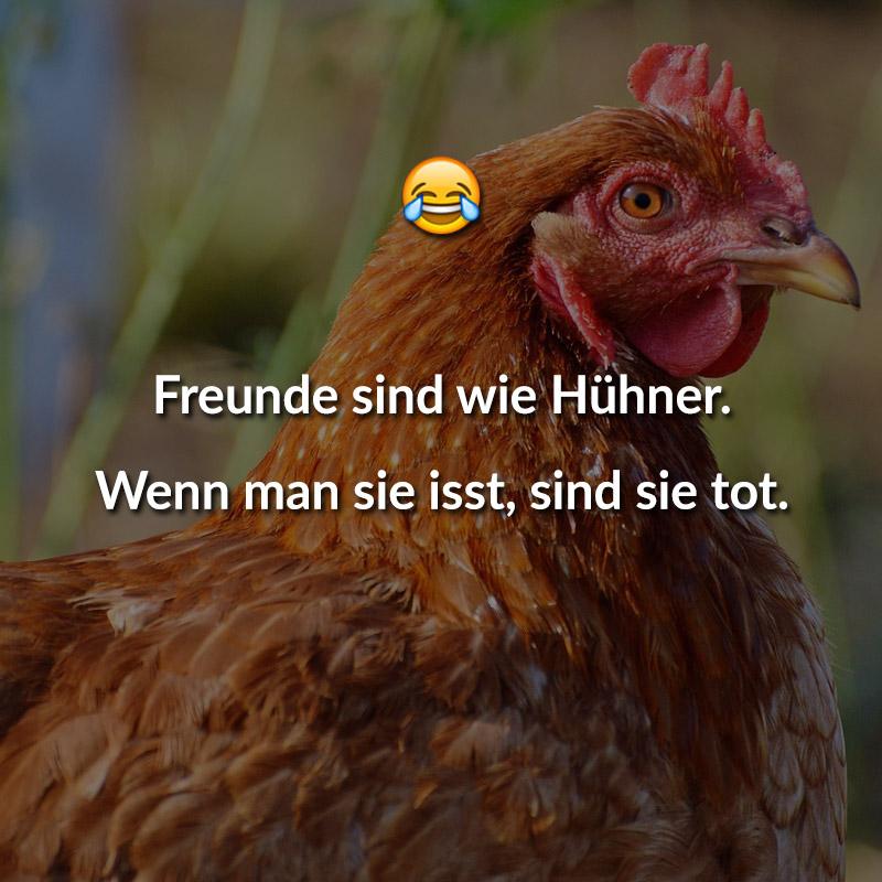 Freunde sind wie Hühner. Wenn man sie isst, sind sie tot.