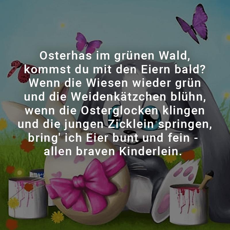 Osterhas im grünen Wald, kommst du mit den Eiern bald?  Wenn die Wiesen wieder grün und die Weidenkätzchen blühn,  wenn die Osterglocken klingen und die jungen Zicklein springen,  bring' ich Eier bunt und fein - allen braven Kinderlein.
