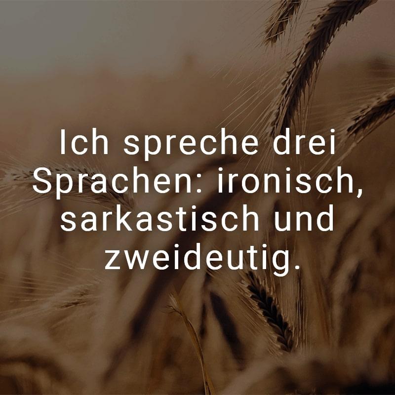 Ich spreche drei Sprachen: ironisch, sarkastisch und zweideutig.