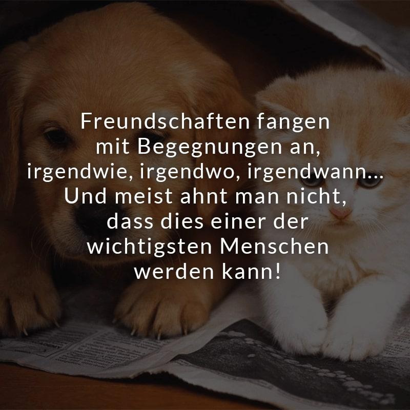 Freundschaften fangen mit Begegnungen an, irgendwie, irgendwo, irgendwann... Und meist ahnt man nicht, dass dies einer der wichtigsten Menschen werden kann!
