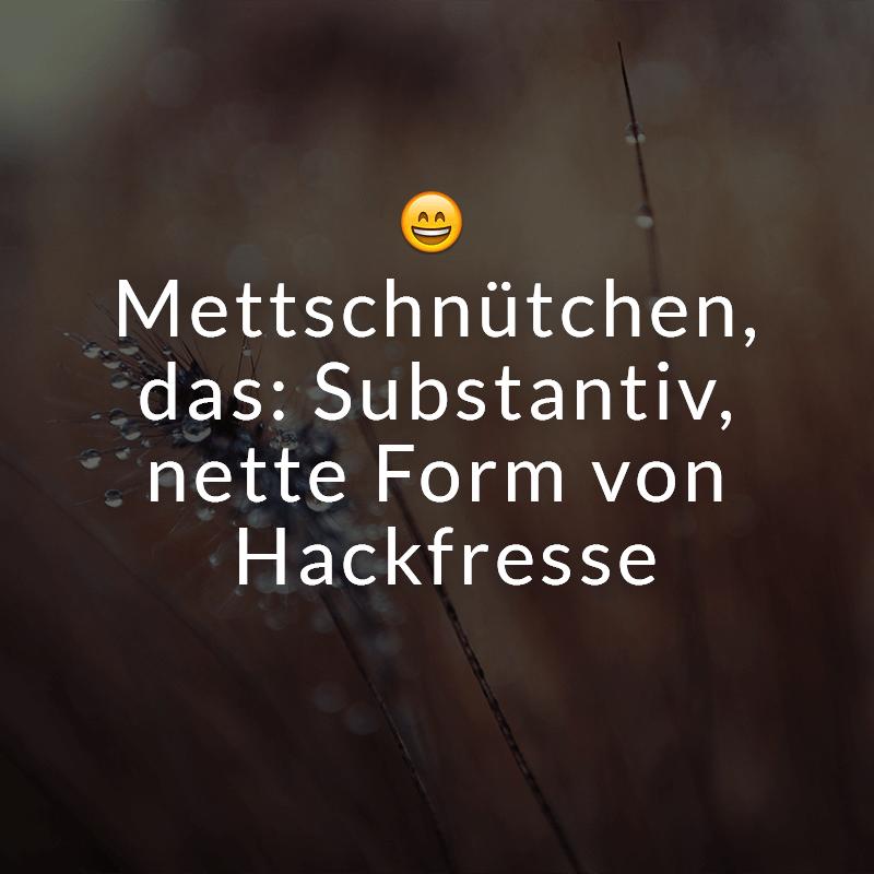 Mettschnütchen, das: Substantiv, nette Form von Hackfresse