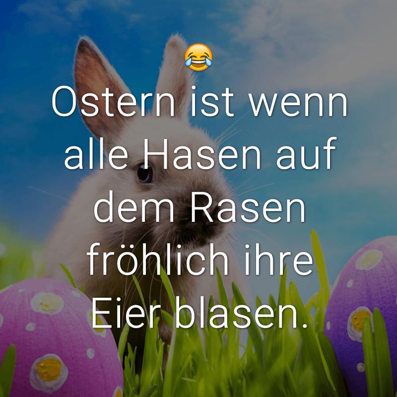 Ostern ist wenn alle Hasen auf dem Rasen fröhlich ihre Eier blasen.