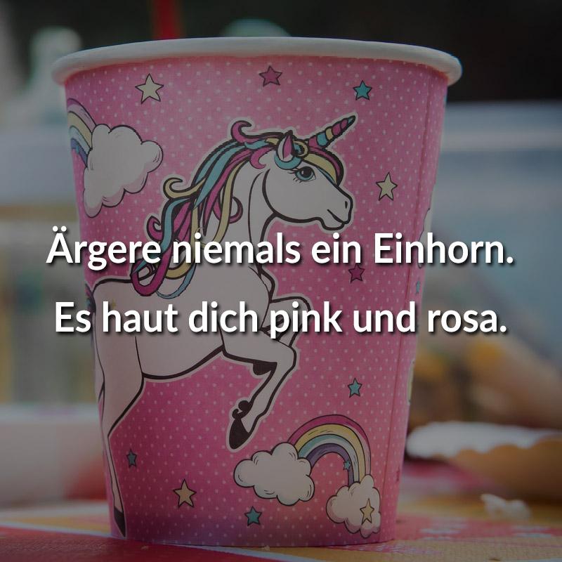 Ärgere niemals ein Einhorn. Es haut dich pink und rosa.