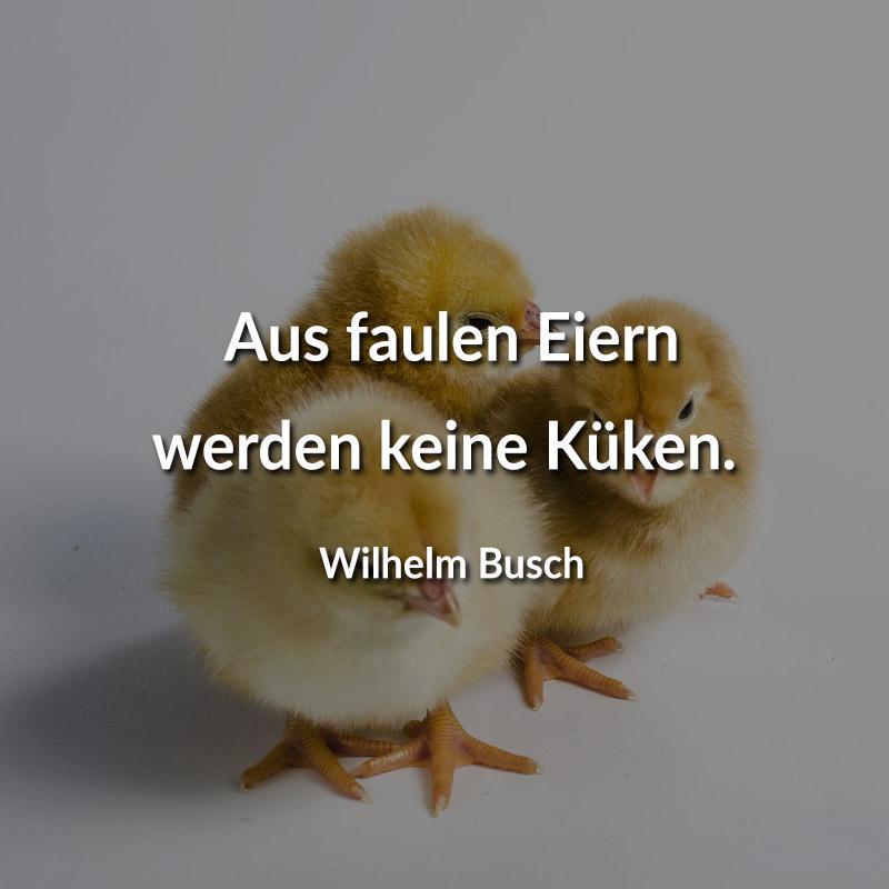 Aus faulen Eiern werden keine Küken. (Wilhelm Busch)