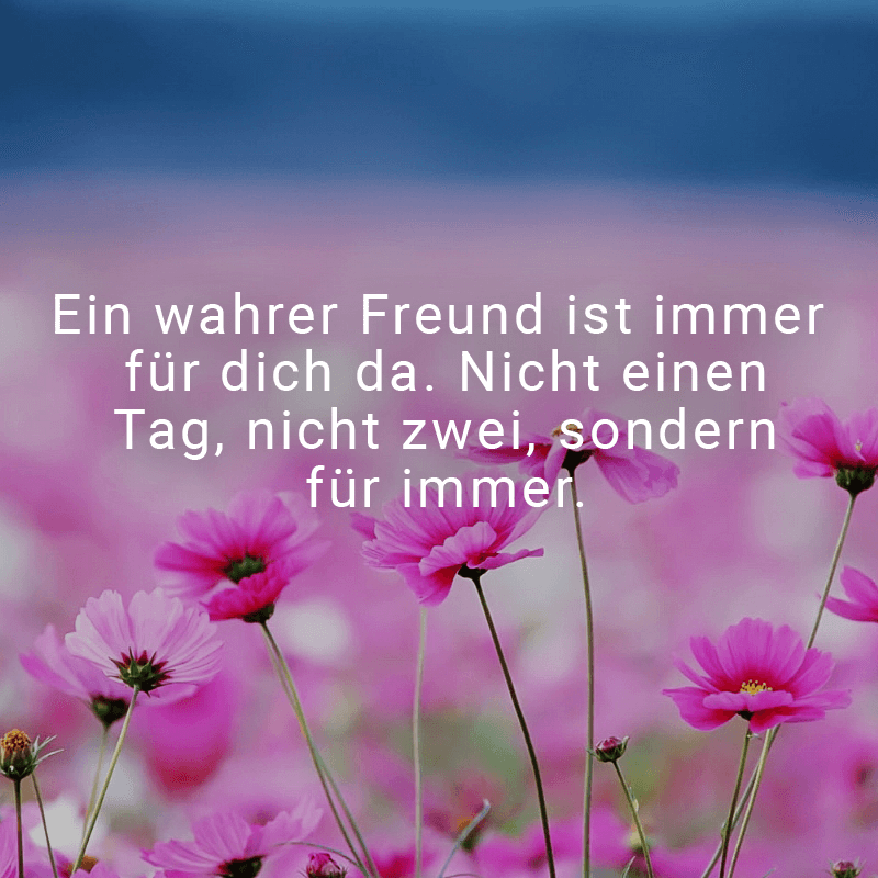 Ein wahrer Freund ist immer für dich da. Nicht einen Tag, nicht zwei, sondern für immer.
