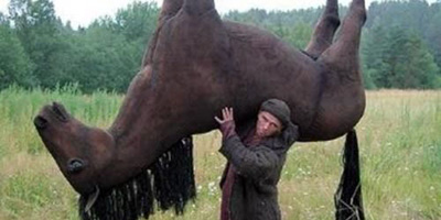 Kann man mit dir gut Pferde stehlen?