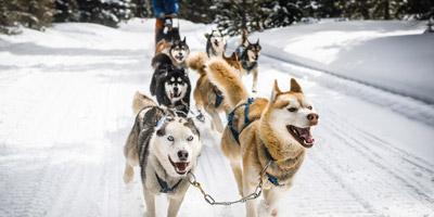 Welcher Wintersport passt zu dir?
