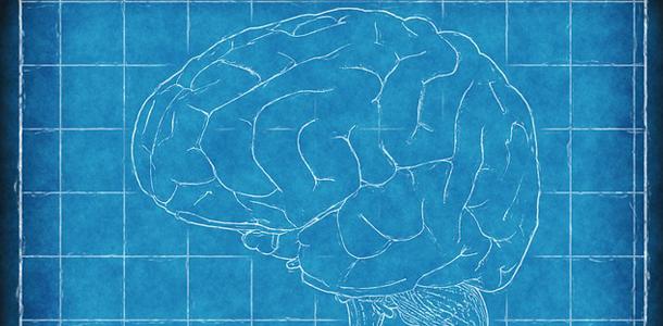 Nutzen wir tatsächlich nur 10 % unseres Gehirns?
