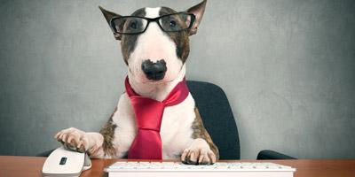 Solltest du dich nach einem neuen Job umsehen?