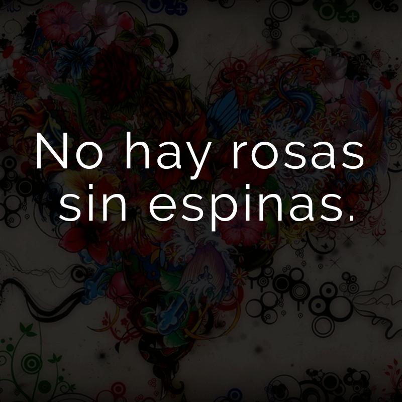 No hay rosas sin espinas. (Spanisch für: Keine Rose ohne Dornen.)