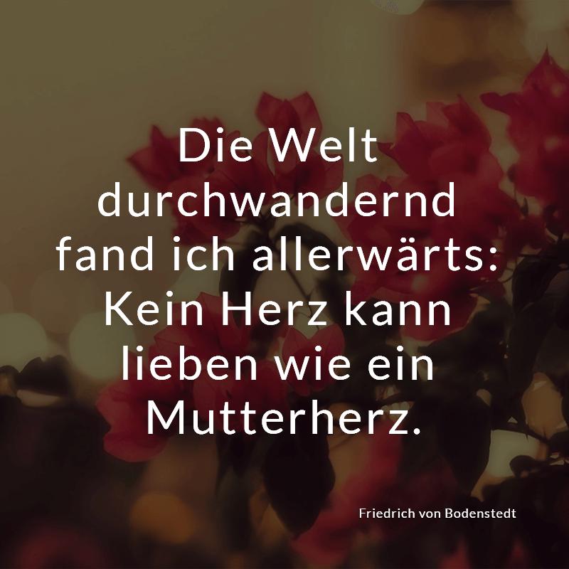 Die Welt durchwandernd fand ich allerwärts: Kein Herz kann lieben wie ein Mutterherz. (Friedrich von Bodenstedt)