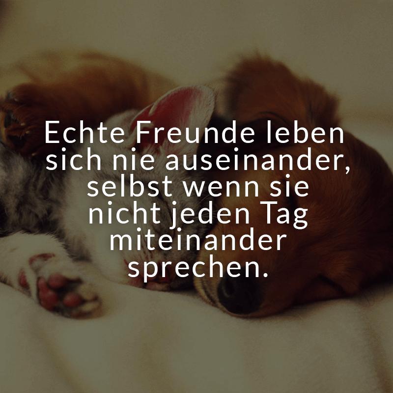 Image Result For Liebesspruche Zum Essen