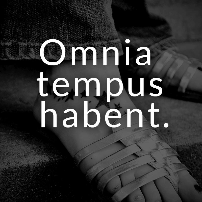 Omnia tempus habent. (Lateinisch für: Alles hat seine Zeit.)