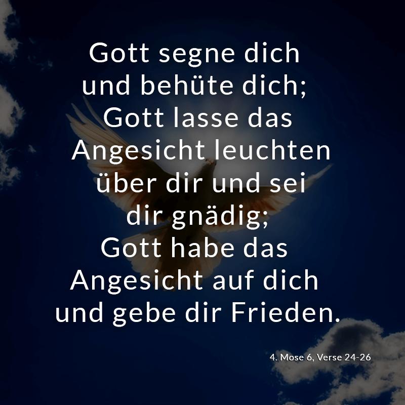 Image Result For Zitate Bibel Musik