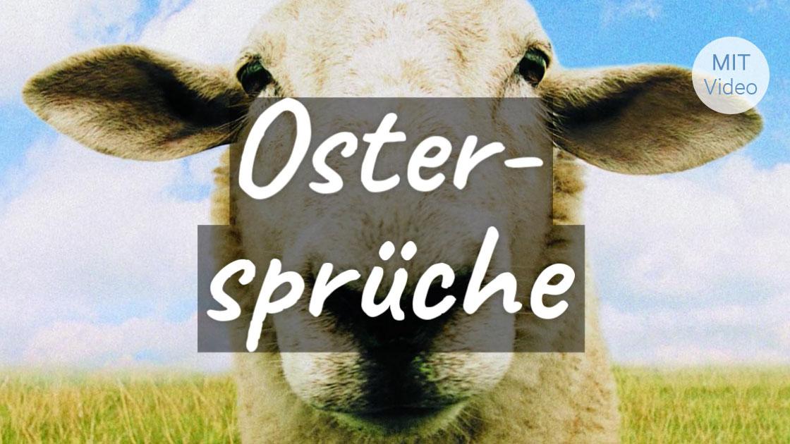 ᐅ Beliebte Ostergrusse Osterspruche